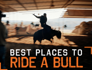fm02-3013-best-places-to-ride-a-bull-dm1