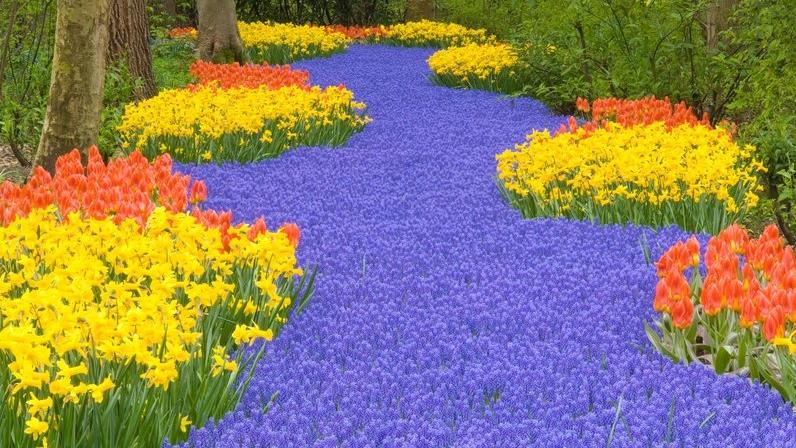 42-20115193.jpg__800x0_q85_crop