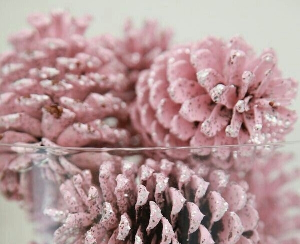 Pink-spray-painted-pine-cones